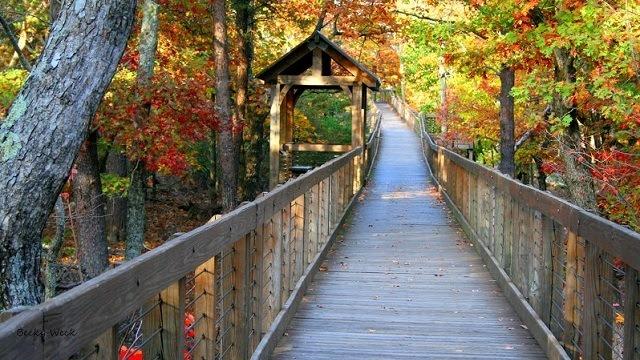 Calhoun County Cheaha State Park